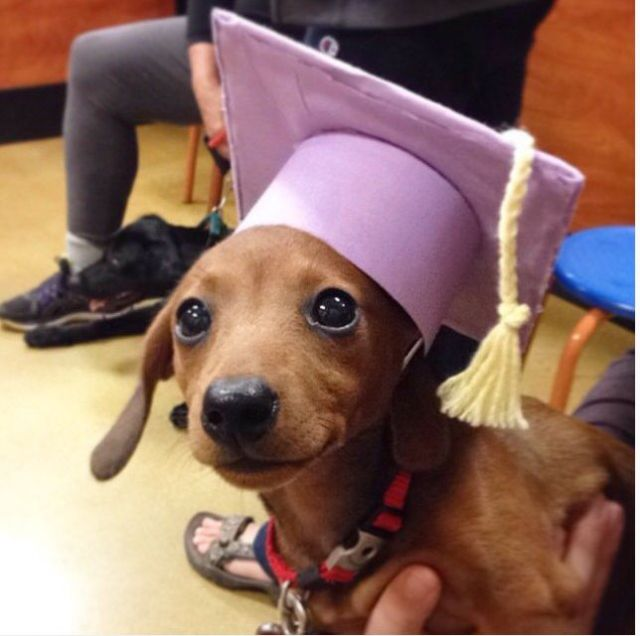 Winnie Graduates